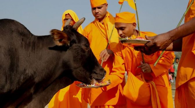 Whose cow is it anyway? That of Brahmin-Baniya or farmer's?